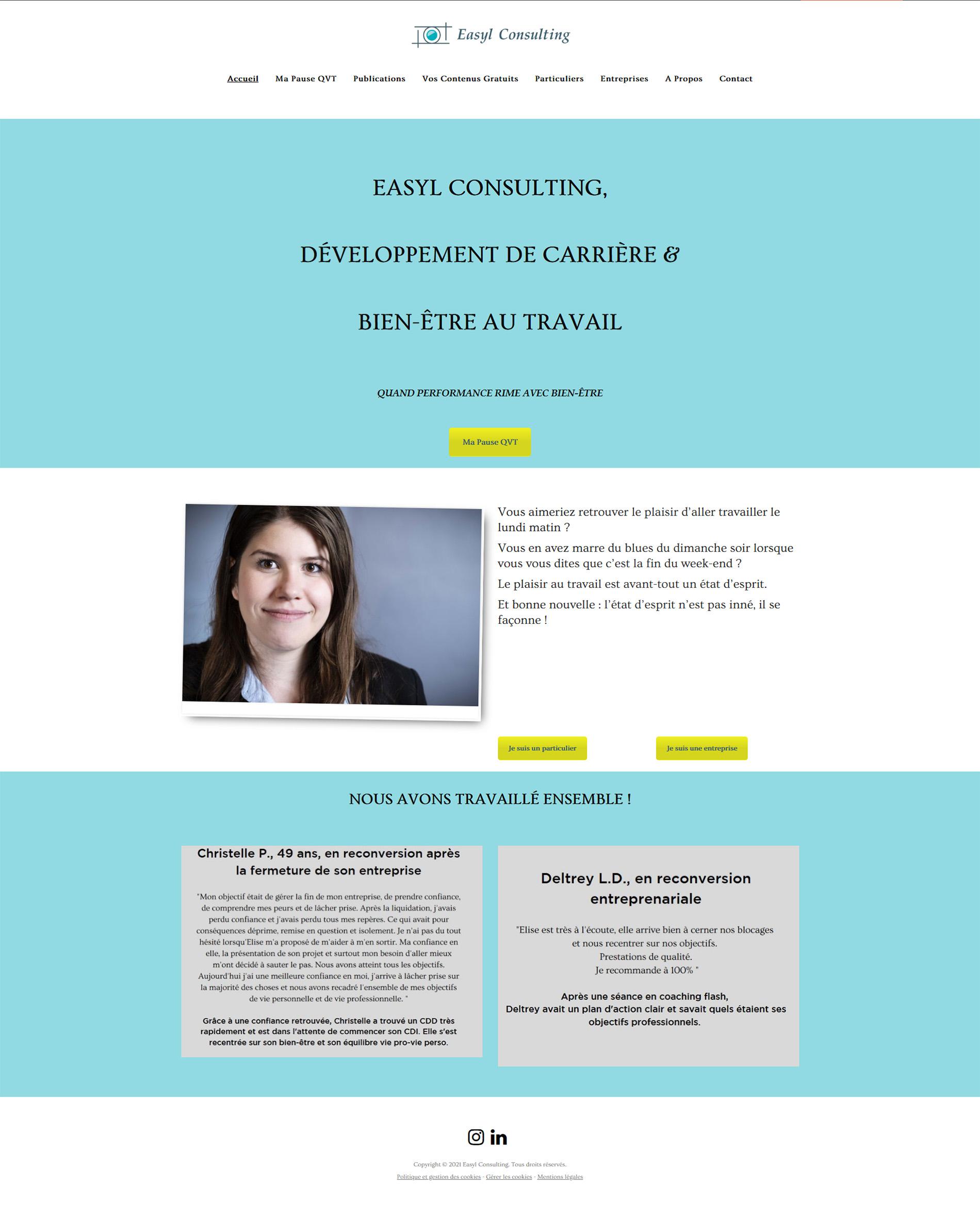 Screen avant refonte du site web d'Easyl Consulting
